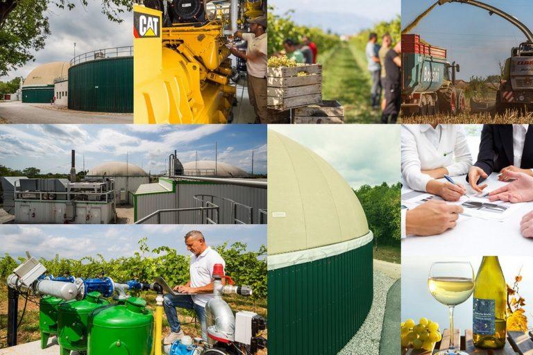 Read more about the article In Friuli la transizione ecologica è già realtà